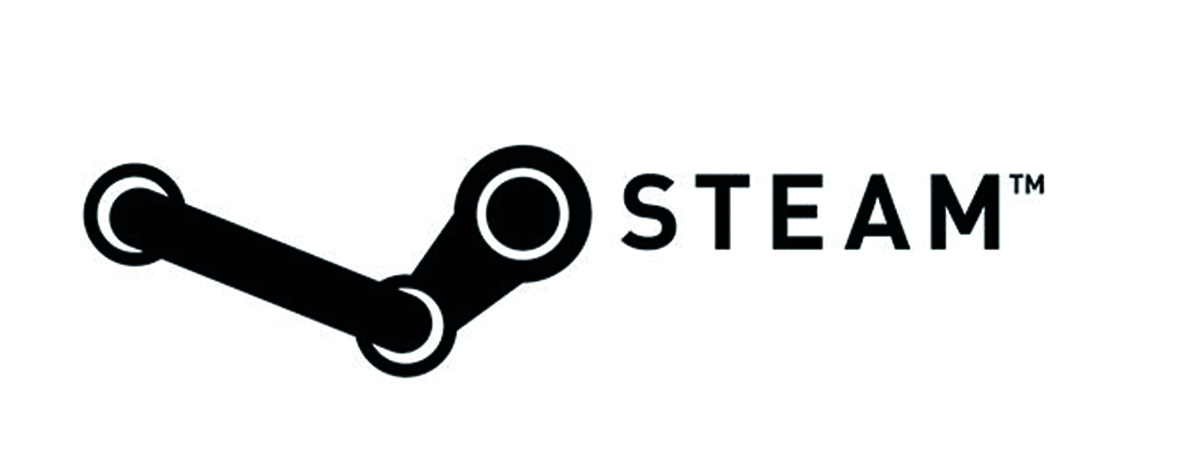 Partner Steam